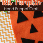 Felt Puppet Hand Craft
