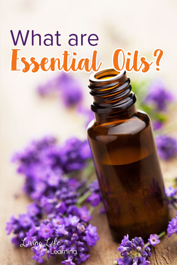Want to know what are essential oils? You keep hearing about them but don't know much at all, find out what they are and how they can help your family