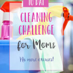 10 day cleaning challenge